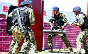 新疆一个月打掉32个暴力恐怖团伙,6名民警牺牲、殉职