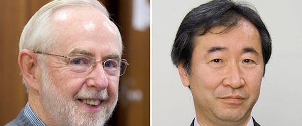 中微子振荡小史:美苏和日本两组科学家盲人摸象的20世纪