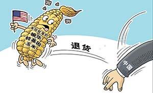 质检总局:我国退运125.2万吨进口美国转基因玉米