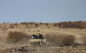 对话纳米比亚官员:若无法从野生动物获益,人们就不会保护它