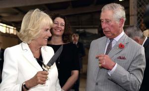 """当地时间2015年11月10日,澳大利亚巴罗萨谷,英国查尔斯王子偕夫人卡米拉参观当地沙普酒庄(Seppeltsfield Winery)。图为卡米拉举起一把小刀""""威胁""""查尔斯王子,后者一脸紧张。 东方IC 图"""