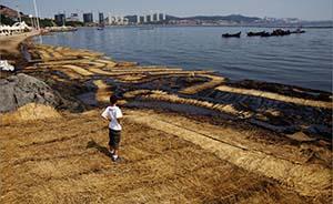为摆平油管特大爆燃事故,蒋洁敏曾承诺在大连再建多个石化厂