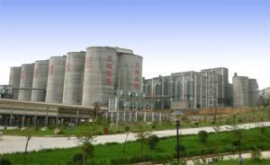 陕西礼泉县政府为企业开虚假证明,律师称系不务正业应追责