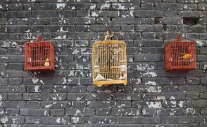 """""""围墙""""往事:中国封闭型社区的兴起与衰落"""