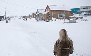学人行走|我与北极原住民的亲密接触①