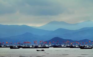 """鱼类产卵场遭破坏出现""""东海无鱼""""现象,农业部提出扩大禁渔"""