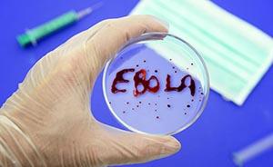 上海浦东被传发现埃博拉高度疑似病例,官方辟谣了