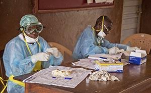 """""""总比等死强"""",WHO同意使用抗埃博拉病毒试验药物"""