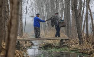 光明网评论:究竟是什么人要把河北两位残疾种树老人架空?
