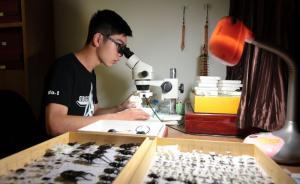 浙江一高中生二度发现昆虫新物种,5年自制标本上万件