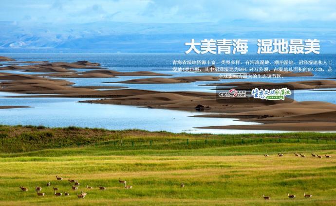 【生態文明@濕地】大美青海,最美濕地