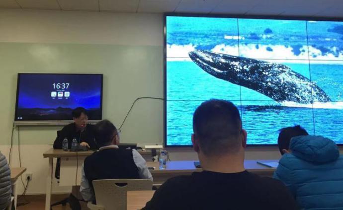講座︱邱仲麟:中國歷史上的鯨豚擱淺