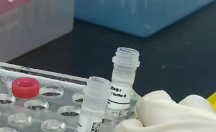 """唾液可檢測天賦基因?專家:兩三個基因點位""""劇透""""不了人生"""