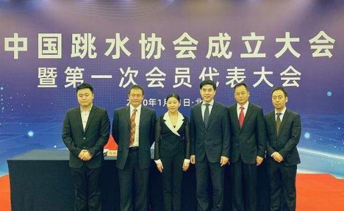 中國跳水協會成立:周繼紅當選主席