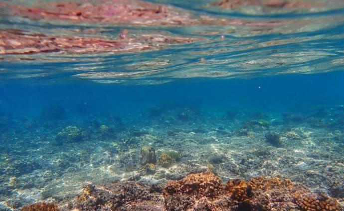 2019年是有记录以来海洋最暖一年