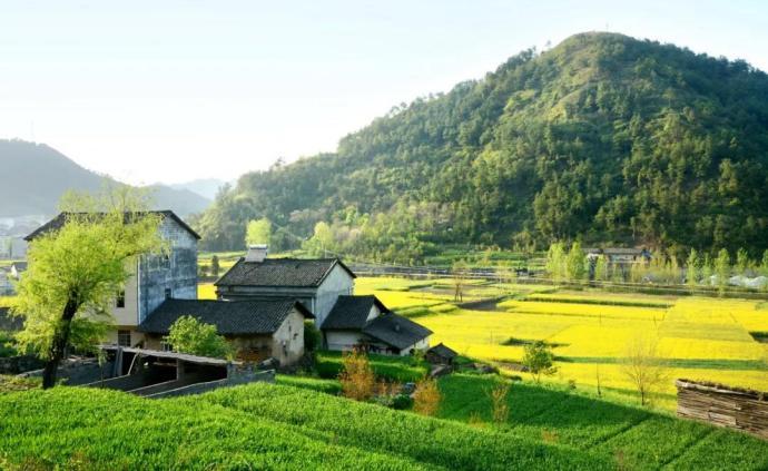 鄉村經濟治理現代化面臨的挑戰