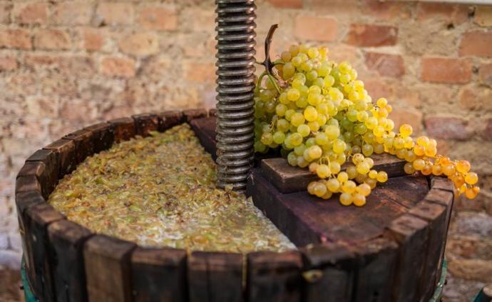 充滿機遇與挑戰的發酵酒市場