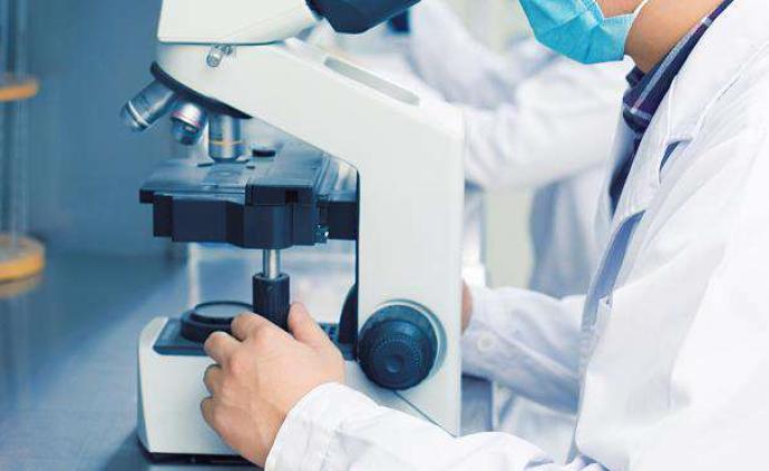 新加坡新增7例新冠肺炎病例,累計確診40例