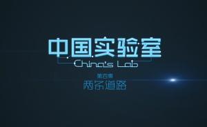 澎湃新闻原创纪录片《中国实验室》第四集:两条道路