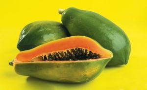 官方:广东市面转基因产品只有木瓜,没有转基因玉米水稻