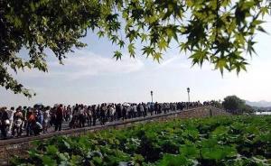 国庆黄金周出游即将启幕:哪些景点游客爆棚?啥时出行最集中