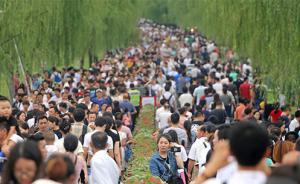 """西湖景区接待游客近78万创记录,6名""""野导""""被警方处罚"""