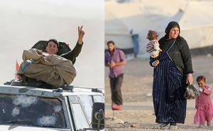 直击|伊拉克收复摩苏尔战役打响,数十万平民因战疏散