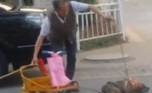 """一""""虐狗""""视频网上流传,老人称打非虐待而是训练狗拉车"""