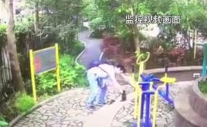 视频|网传上海一男子小区内虐猫,现场视频流出引发争议
