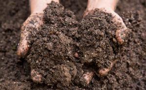 气候变暖能使全球土壤未来释放550亿吨碳,相当美国排放量