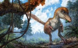 """人类首次在琥珀中发现恐龙化石,""""是一具相对新鲜的遗骸"""""""