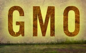"""湖南一公司未标示""""转基因食品""""受处罚,两种菜籽油责令停售"""