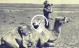 全景视频|再现一百年前的考古探险:在戈壁沙漠发掘恐龙化石