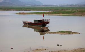 院士:鄱阳湖建闸还应全面禁渔,江豚食物充足就不必游到长江