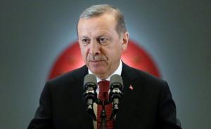 """土耳其总统指责前盟友在美""""遥控""""政变,称其追随者参与其中"""