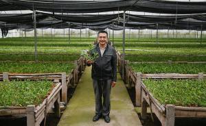 中国村支书丨6年在外务工体味寒酸 ,8年干村官感到自豪
