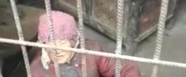 """广西九旬老人被关""""猪圈""""?当地政府与其家人签订赡养协议"""