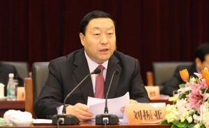 """刘振亚:统一的亚洲电网尚未形成,可构建""""1+5""""联网格局"""