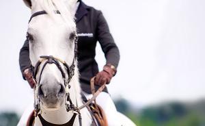 骑马容易摔伤腰?骨科专家:脚踝受伤可能性更大