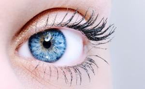 眼里为何容不得沙子,眼球内部如同精密光学仪器