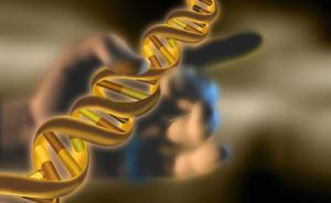 中国科学家将进行全球首例基因编辑技术治疗癌症试验