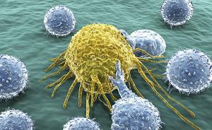 专家:把DC-CIK等同免疫疗法、否定免疫疗法是一叶障目