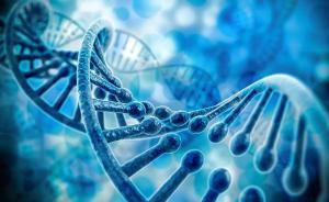 《自然》首次证实:基因甲基化缺失是致癌重要成因