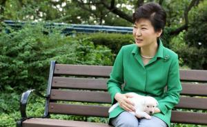 朴槿惠将9只宠物狗留青瓦台被指虐狗,韩国多部门推诿不接手