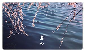 节气|春分易春困 药膳防春病