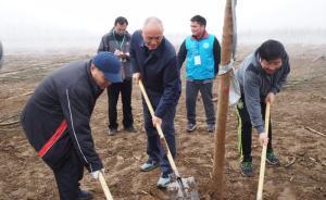 """视频 162名部级官员参加""""部长义务植树"""",种了千余株"""