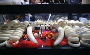 中国今日起停止首批企业加工销售象牙,专家呼吁明确库存处置