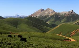 三江源国家公园试点建设有序推进,近七百名牧民管护员已上岗