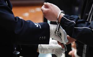 酒驾撞警车暴力拒检并辱骂殴打6名警员,河南4男子被刑拘