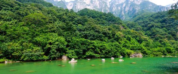 河南云台山风景区管理局原局长孟小军被批捕:涉受贿、行贿罪